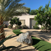 Drought Tolerant Plants and Artificial Turf