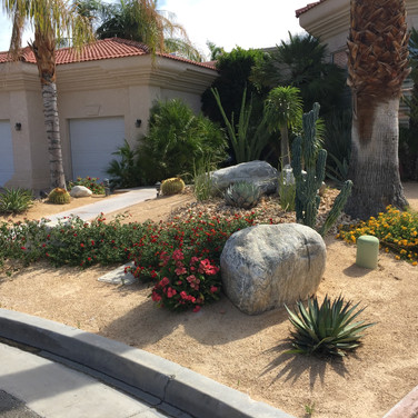 A Shady Landscape Remodel