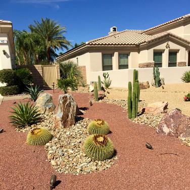 Cactus River Landscape Remodel