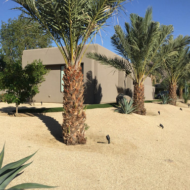 Pristine Landscaping