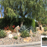 Before and After Desertscape Remodel
