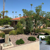 Backyard Fountain Remodel