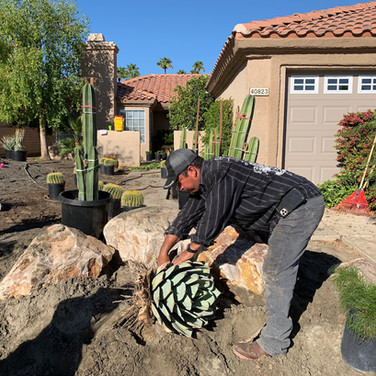 Placing Boulders and Plants