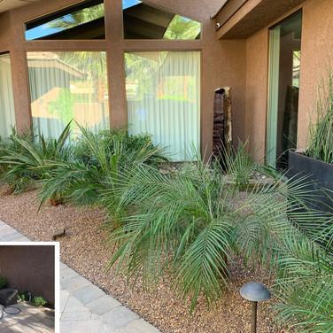 Desert Courtyard Redesign