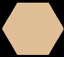 hexagon-tan.png