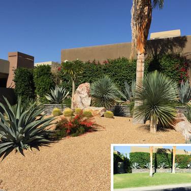 Large Corner Desertscape Remodel
