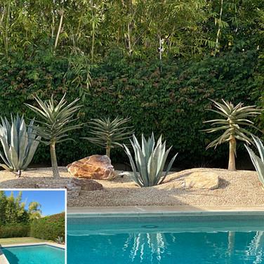 Backyard Pool Remodel