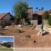 Boulder and Desert Plant Landscaping