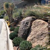 Desertscape Ironwood Remodel