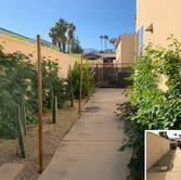 Side Yard Renovation