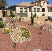 Gravel and Draught Tolerant Plant Landscape Design