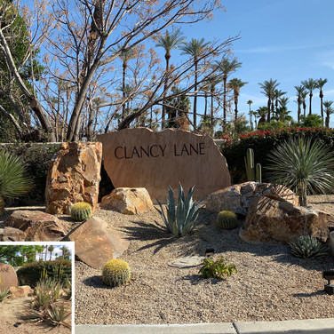 Desert Curb Appeal Before and After