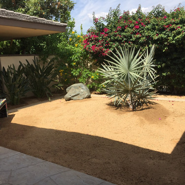 Desert Backyard Redesign