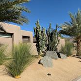 Palm Desert Modern Remodel
