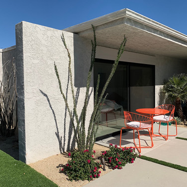 Modern Backyard Update