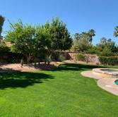 Backyard Turf Redesign