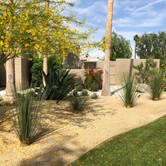 Partial Backyard Desertscape