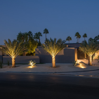 Peaceful Desertscape Night View
