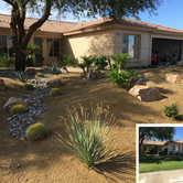 Desert Frontyard Redesign