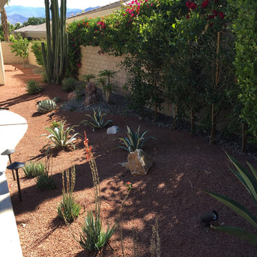 Rancho Mirage Backyard Redesign
