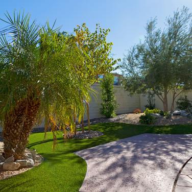 Backyard Desert Scape Remodel