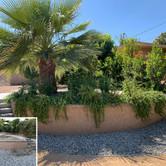 Desert Planter Redesign