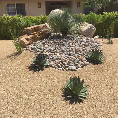 Drought Tolerant Entryway