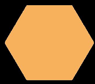 hexagon-orange.png