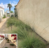 La Quinta Courtyard Before and After