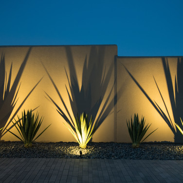 Agave Desertscape Remodel at Night