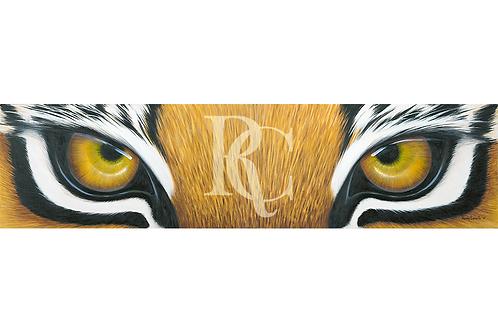 """""""Tiger Eyes II"""""""