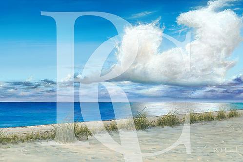 """""""Some Beach"""""""