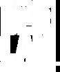 Berlan-Vertical copia.png