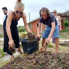 Making good compost is key to cultivating healthy plants & trees