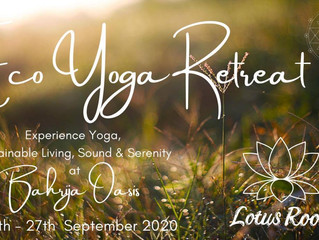 Lotus Room Ecological Yoga Retreat