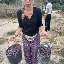 Smiles as gather an abundance of plums & fruits