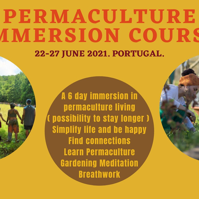 6 Day Permaculture Immersion Course