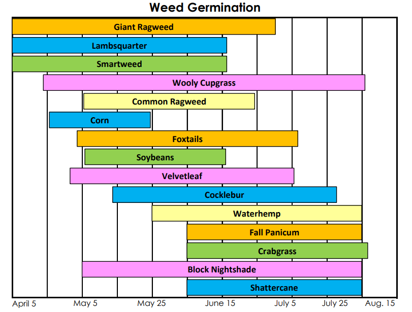 Weed Germination.png
