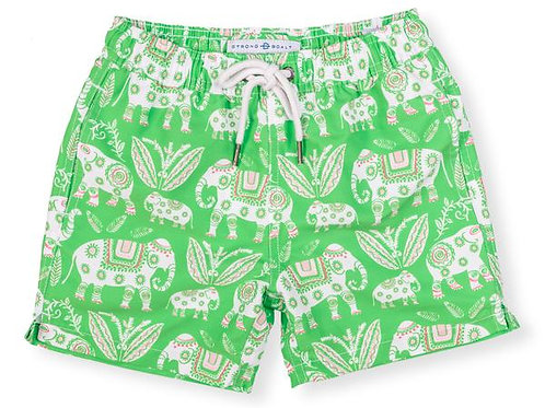 Niños - Elefante verde