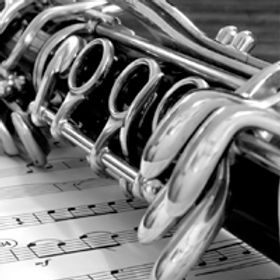 Experienced clarinet teacher in the Ottawa area is seeking students.