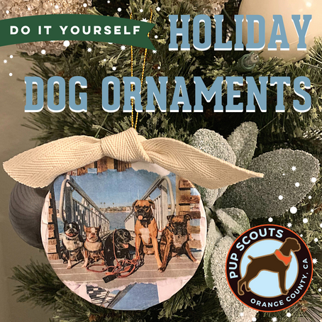 DIY - HOLIDAY DOG ORNAMENTS