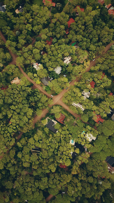 Top Trends Transforming Land