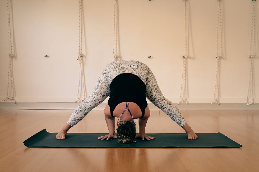Thirroul Yoga Shala #thirroulyoga prasarita A