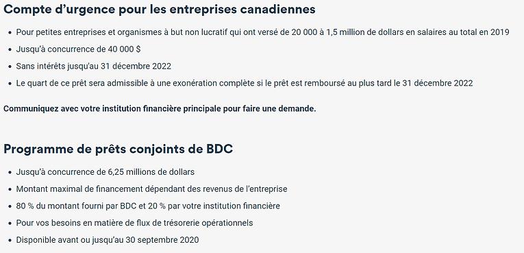 BDC - Covid-19 #1.PNG
