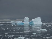 icebergs cierva cove.JPG