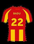 badu1_4x-8.png
