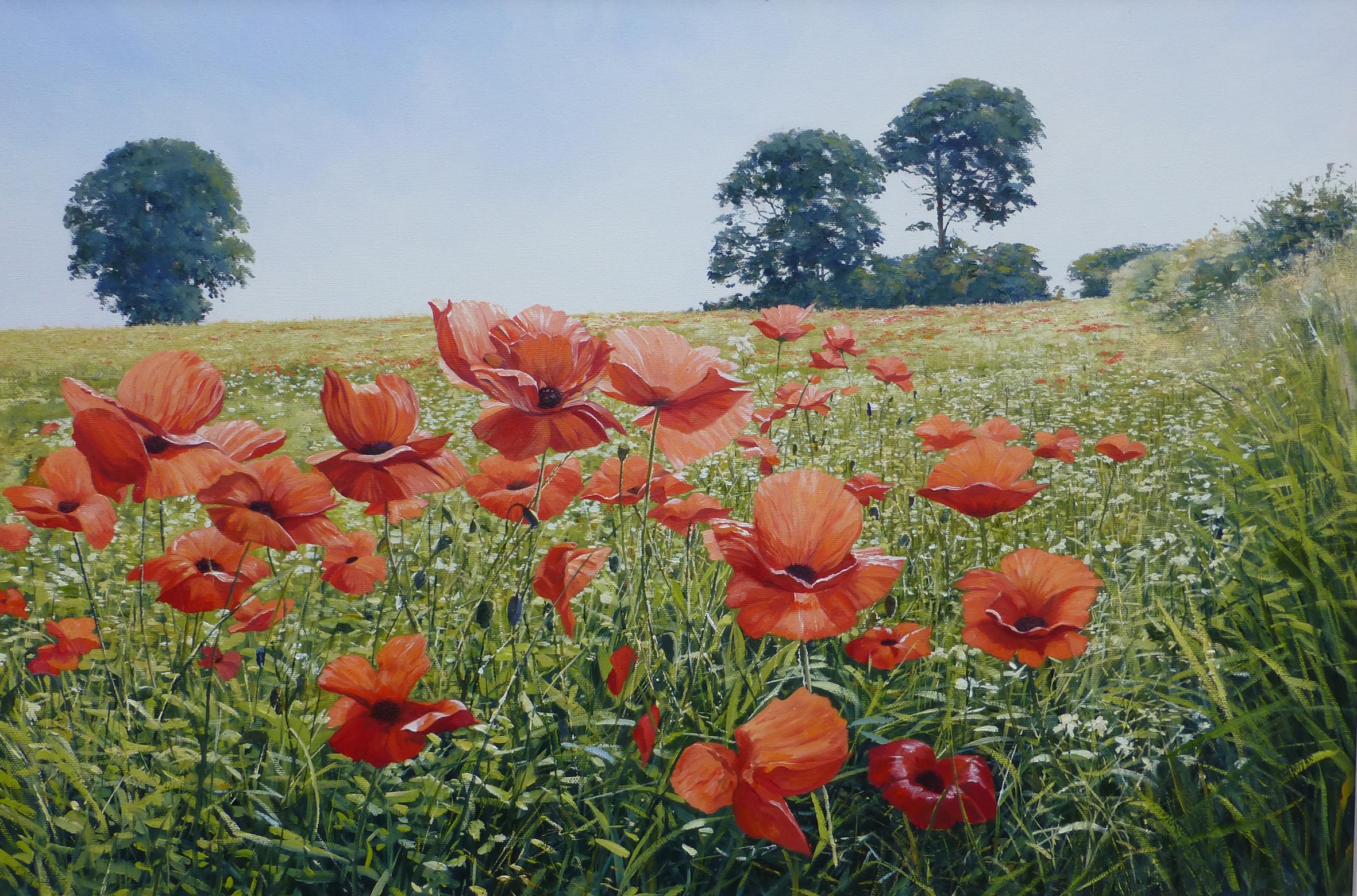 Poppyfield,oil,70cm x 60cm