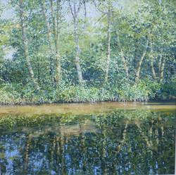 Summer Waters,oil,60cm x 60cm.JPG