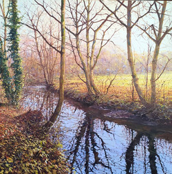 Autumn Beck,oil,60cm x 60cm.jpg