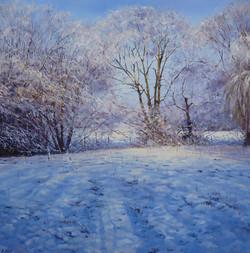 Snow Shadows,oil,60cm x 60cm